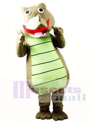 Cocodrilo adulto Disfraz de mascota