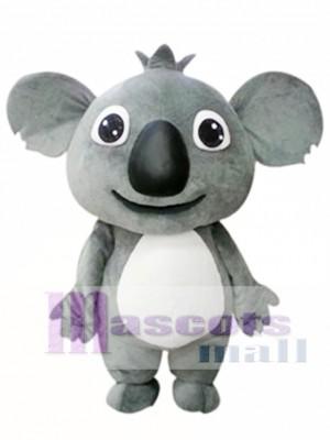Pequeño Koala Disfraz de mascota