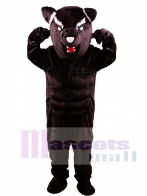 Pantera Negra Poderoso Gato Disfraz de mascota