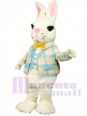 Conejito de Pascua de suero de leche Disfraz de mascota