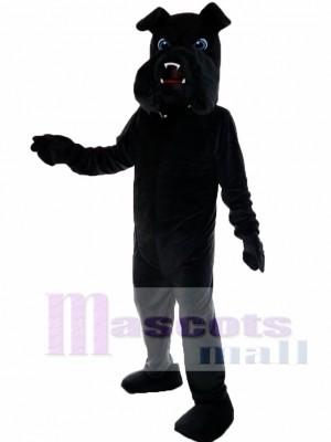 Bulldog negro Disfraz de mascota