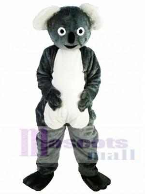 Lindo koala gris Disfraz de mascota