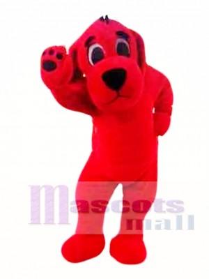 Perro rojo grande Disfraz de mascota