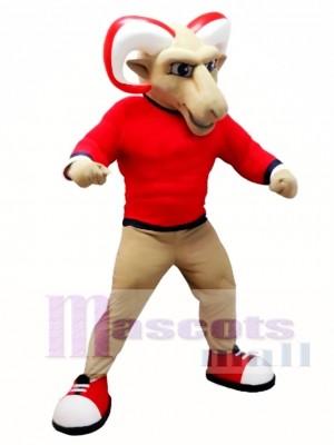 Colegio Ram Disfraz de mascota