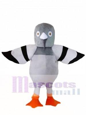 Paloma gris Disfraz de mascota