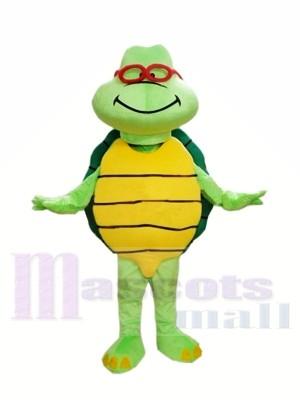 Tortuga verde barata Disfraz de mascota