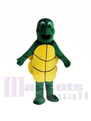 Pequeña tortuga verde Disfraz de mascota