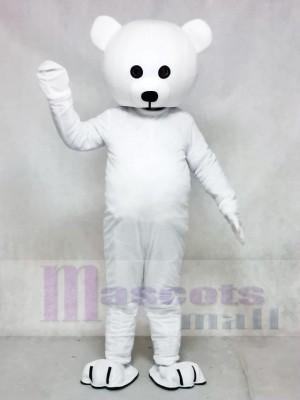 Oso Blanco Nariz Negra Disfraz de mascota
