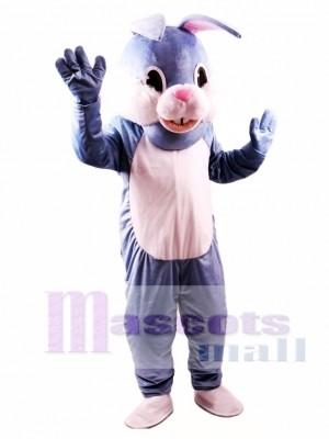 Conejito de Pascua azul Disfraz de mascota