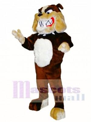 Buldog Disfraz de mascota