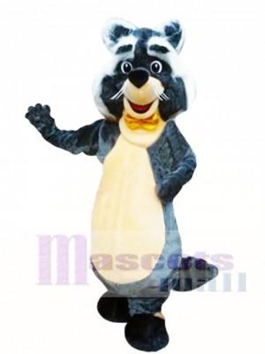 Mapache rocoso Disfraz de mascota