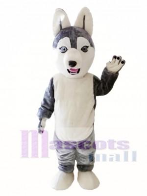 Animales Perro Husky siberiano Disfraz de mascota