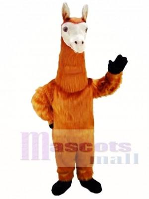 Llama Disfraz de mascota