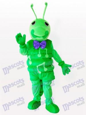 Oruga verde Insecto Disfraz de mascota