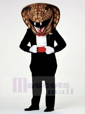 Serpiente Cobra Caballero Disfraz de mascota