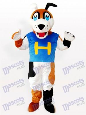 Perro en chaleco azul con H Disfraz de mascota