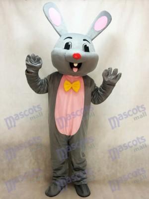 Pascua de Resurrección Gris Conejo Disfraz de mascota Animal