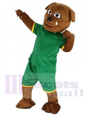 Bulldog marrón en Sudadera verde Disfraz de mascota