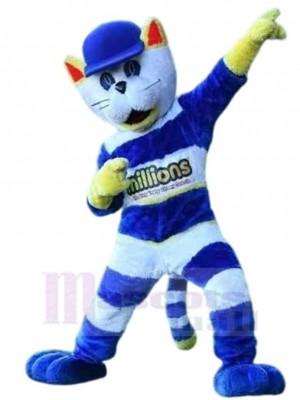 Cappie el gato Disfraz de mascota animal con sombrero azul