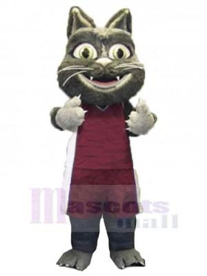 Lindo gato peludo Disfraz de mascota animal  en traje deportivo