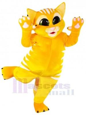 Gato amarillo feliz Disfraz de mascota animal