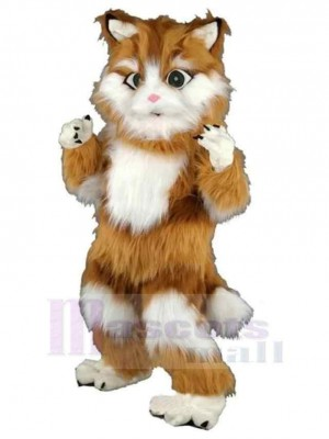 Disfraz de mascota de gato