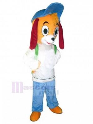 Perro estudiante vigoroso Disfraz de mascota con animal de sombrero azul
