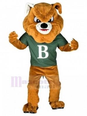 Bulldog marrón feroz Disfraz de mascota Animal en camiseta verde celadón