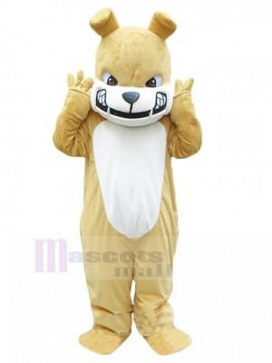 Bulldog británico de color caqui feroz Disfraz de mascota animal