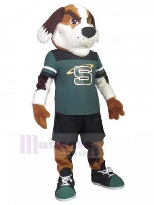 Perro deportivo con el ceño fruncido Animal de traje de mascota en traje deportivo