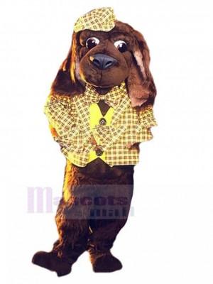 Perro marrón Traje de mascota Animal en traje de cuadros amarillo