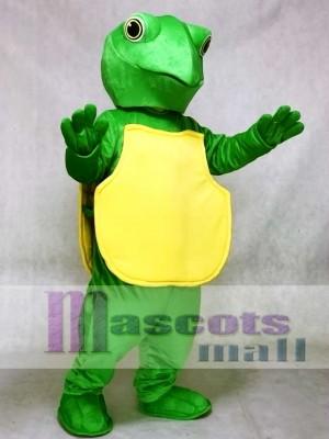Tortuga verde Disfraz de mascota Oceano
