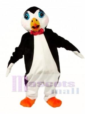 Pingüino lindo Disfraz de mascota