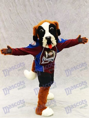 Bernie el perro Avalancha de San Bernardo Colorado Disfraz de mascota