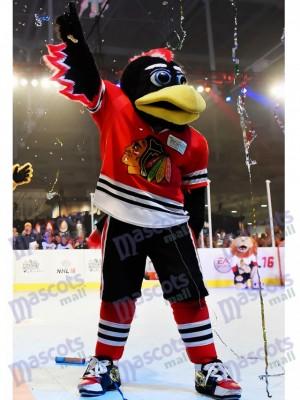 Tommy de los Chicago Blackhawks Halcón Disfraz de mascota