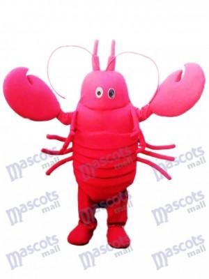 Cangrejo de río rojo Disfraz de mascota Marisco océano