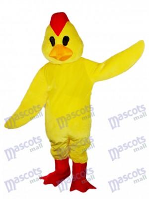 Gallo Pollito Amarillo Disfraz de mascota animal