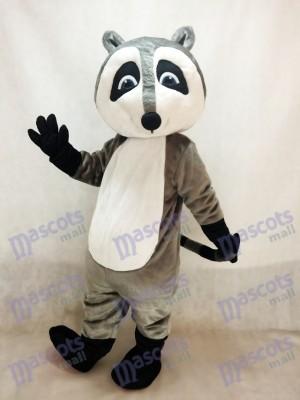 Mapache gris gracioso Disfraz de mascota