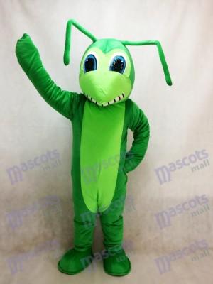 Saltamontes lindo Disfraz de mascota Insecto