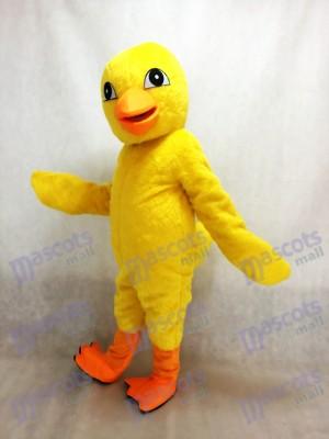Pollito amarillo cómico Disfraz de mascota