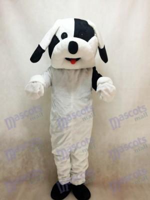 Perro blanco y negro Disfraz de mascota