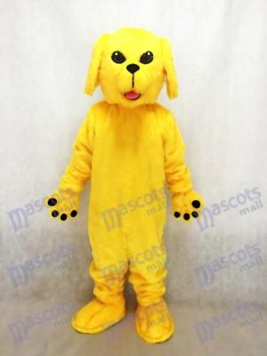 Nuevo lindo perro de laboratorio dorado Disfraz de mascota animal
