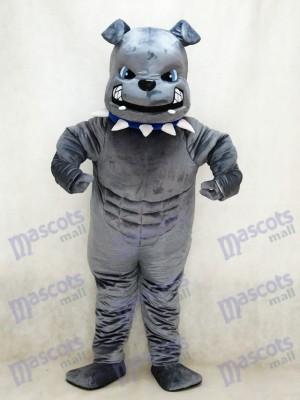 Perro Bulldog gris fuerte Disfraz de mascota animal