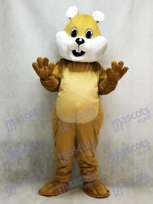 Ardilla marrón regordeta Disfraz de mascota