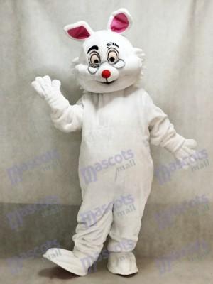 Conejo Conejito de Pascua Blanco Alicia en el país de las Maravillas Disfraz de mascota animal