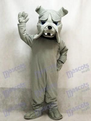 Perro Bulldog Gris Bully Disfraz de mascota animal