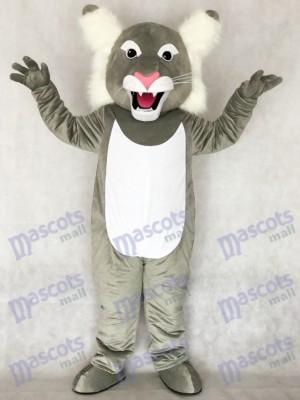 Lindo gato montés gris Disfraz de mascota animal