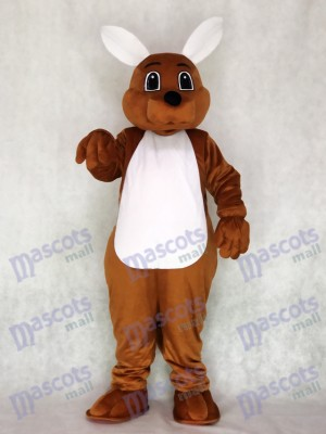 Canguro joey Disfraz de mascota animal
