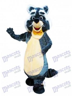 Rocoso Personaje de mapache Disfraz de mascota animal