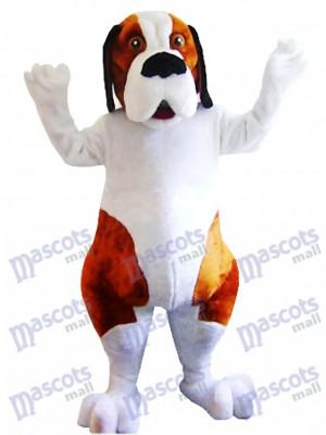 Perro San Bernardo blanco y marrón Disfraz de mascota animal